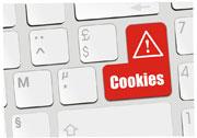 Cookies: il 3 giugno scatta l'obbligo di informare gli utenti sul loro utilizzo